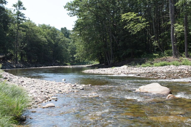 Looking down the main branch of the Neversink, just below the confluence.